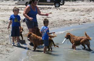 Laura with her grandkids and Tollers enjoy a day at the beach together